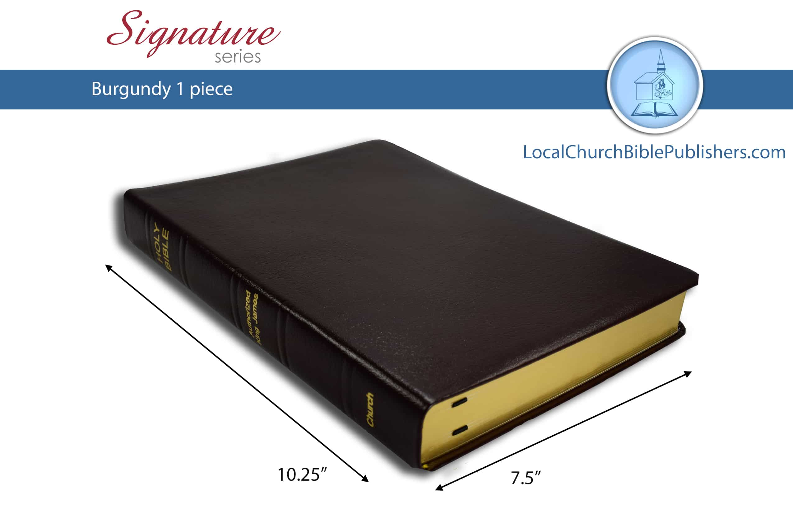 291 STBG Large Print Classic Study Bible Burgundy 1 Piece (Standard)  Limited Edition